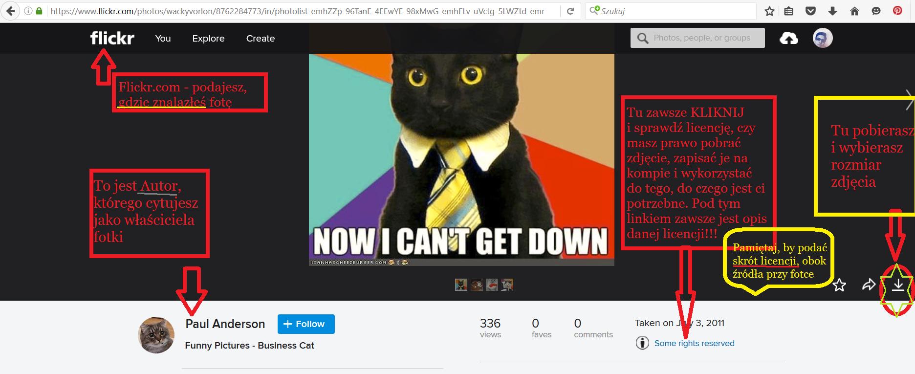 Jak korzystać z Flickr